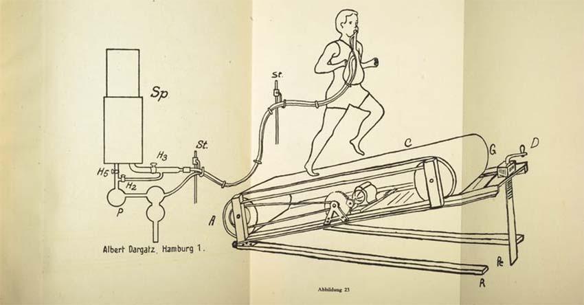 A sportorvoslás eredete Knippin