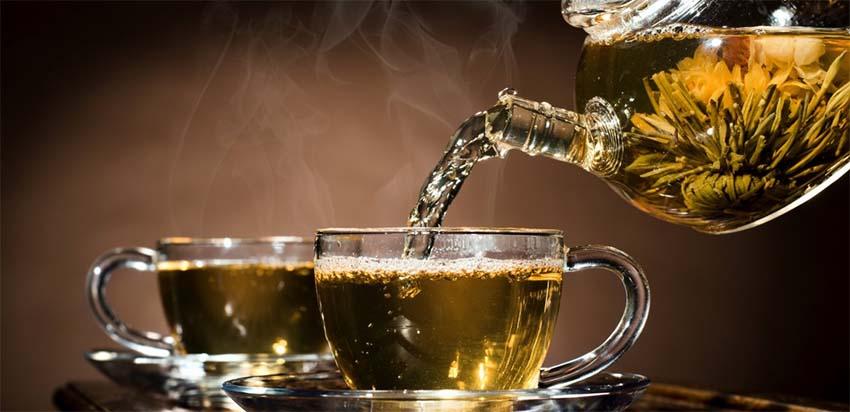 Tea sportorvos