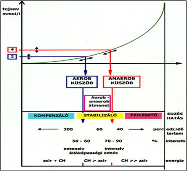 Tejsav diagramm
