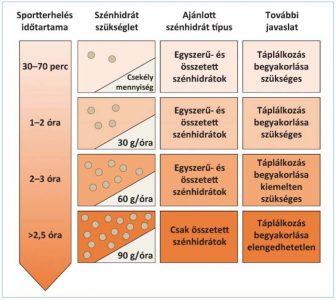 a glikogén tárolja a zsírvesztést)